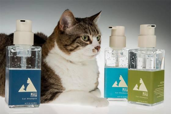 Причины образования колтунов у кошек