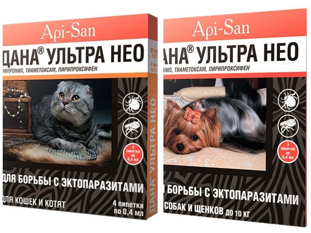 Обзор эффективных средств, капель, таблеток против блох для кошки
