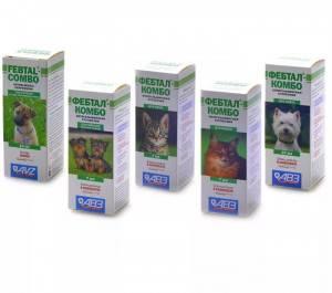 Как часто давать кошке таблетки от глистов