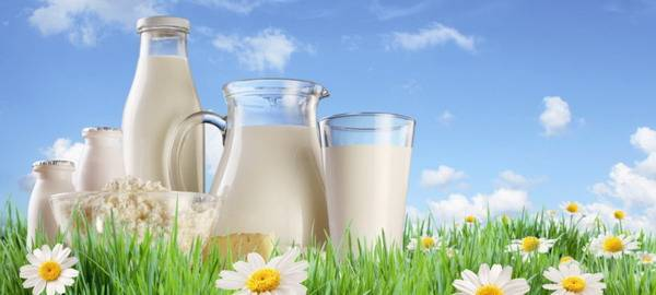 Чем кормить кормящую кошку чтобы было молоко если она ест только сухой корм