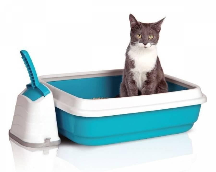 Каниквантел гель для кошек
