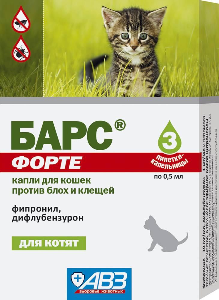 Эктопаразиты у кошек лечение, описание препаратов