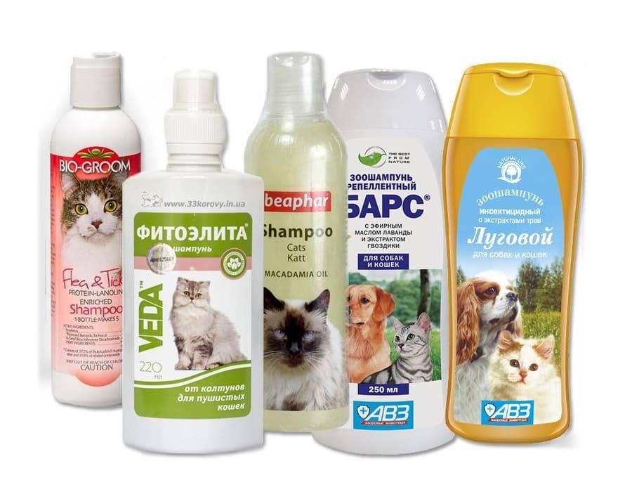 Как помыть кота шампунем от блох