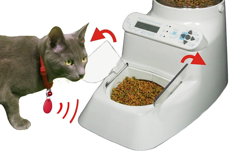 Электронная кормушка для кошек