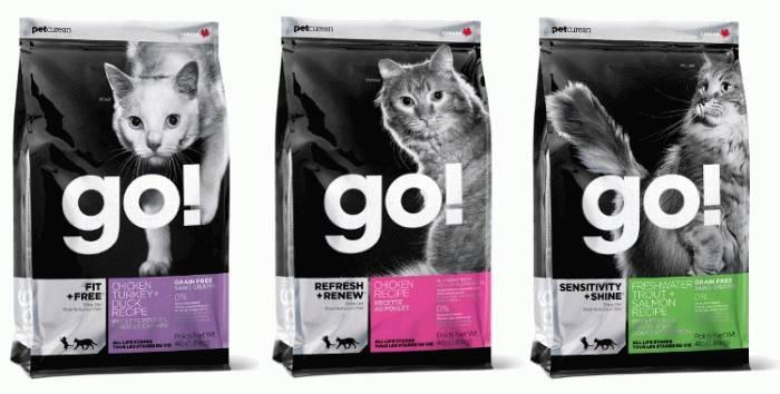Беззерновой корм для кошек: польза и особые указания