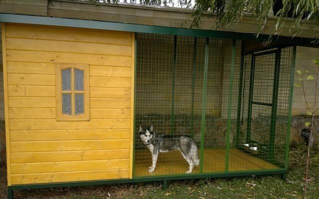 Вольер для собак фото и чертежи удачных конструкций