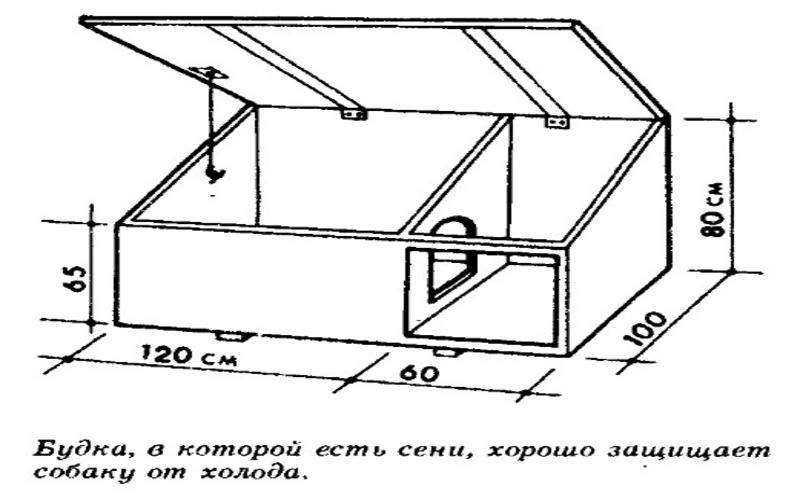 Размеры будки для немецкой овчарки: чертеж, как сделать собачью конуру своими руками, а также расходные материалы для изготовления оптимального домика